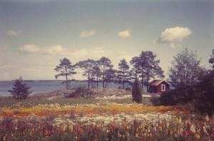 F4 Blomsterhavet Nilssons